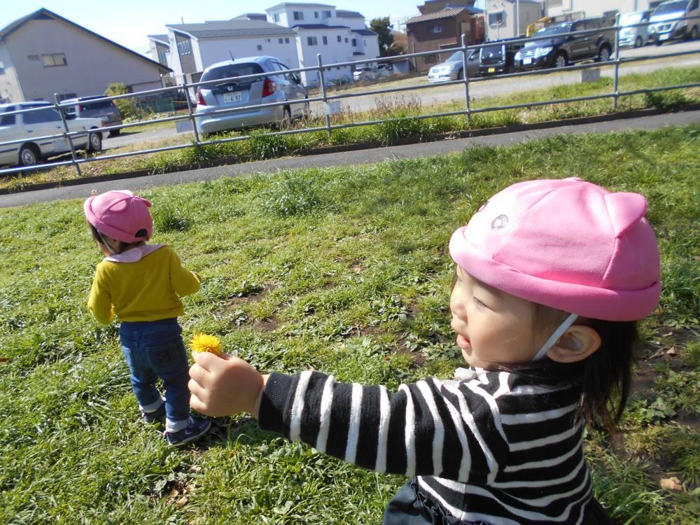 ちゅーりっぷ組🌷公園に行ったよ!