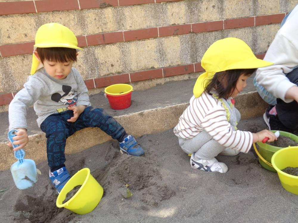 たんぽぽ組🌼砂遊び